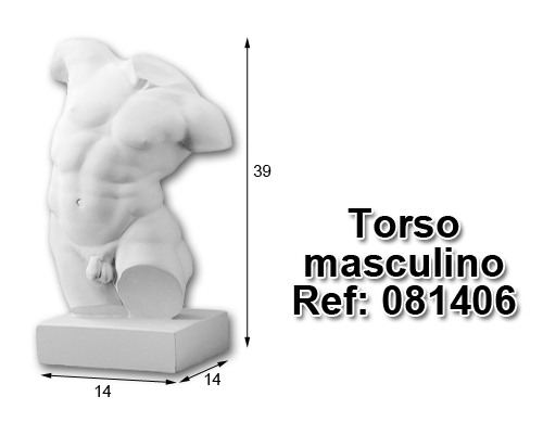 Torso masculino